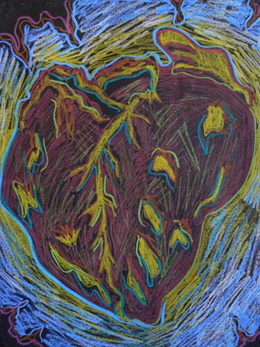 Coração de baleia / Whale Heart